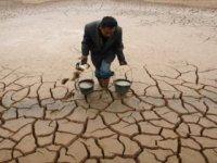 Восток страдает от засухи