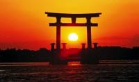 Совершенно удивительные и неожиданные факты о Японии